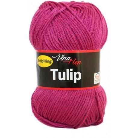 Tulip vínová