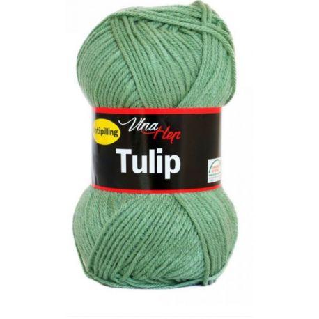 Tulip modrá