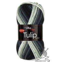 Tulip color - 5218